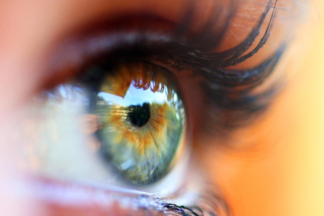 Lacrimal Course