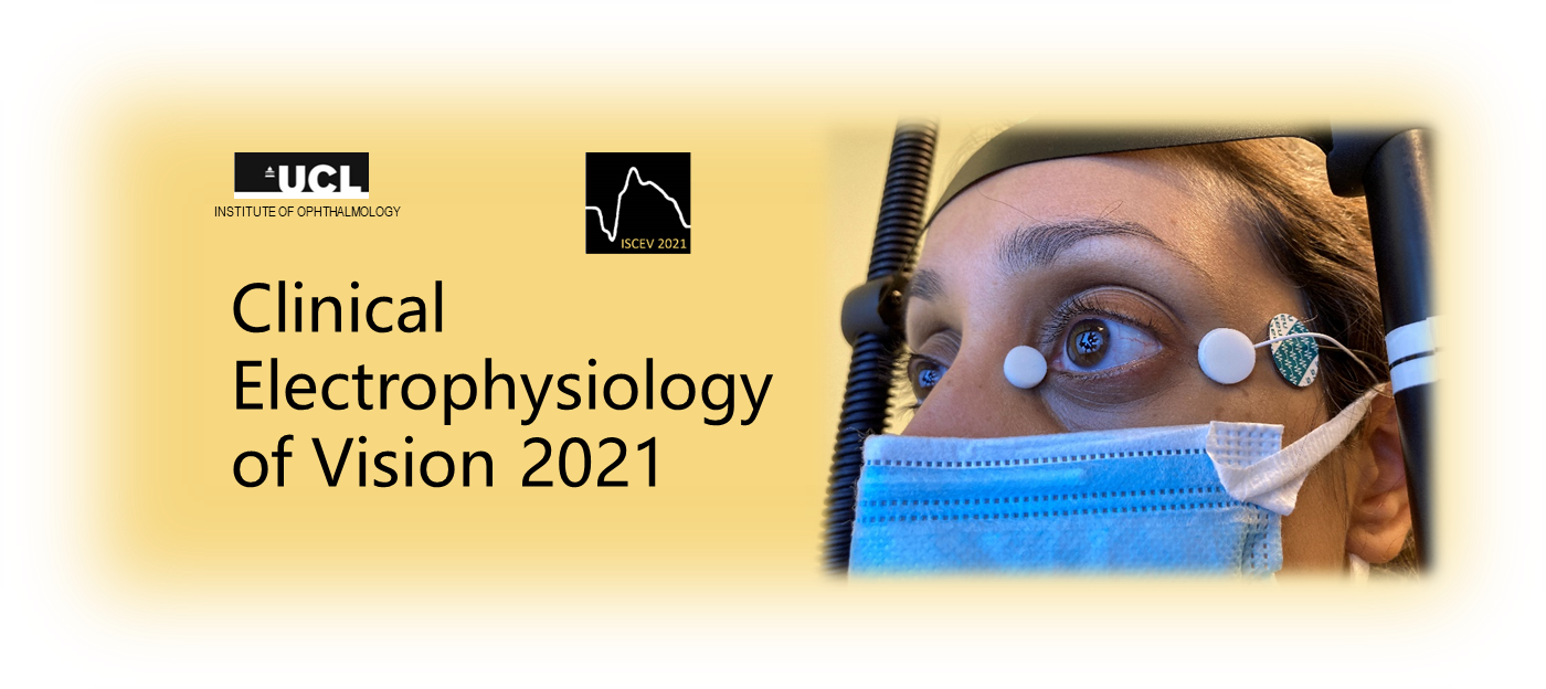 Clinical Electrophysiology of Vision
